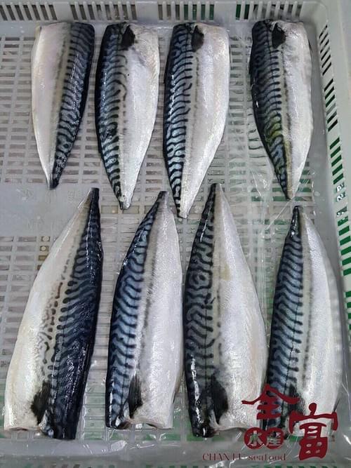 挪威薄鹽鯖魚片 19-20 片裝/箱