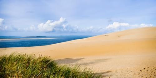 40x80 cm sur plaque Forex- Dune