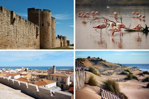 Excursion en Camargue depuis Montpellier (34)