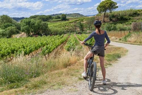 Escapade ½ journée à vélo électrique avec dégustation sur les Terrasses du Larzac (Aumelas - 34)