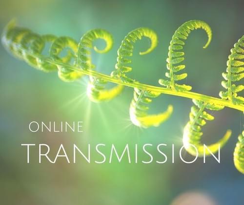 Neosho 本質の目覚めの道 トランスミッション・オンラインセッション