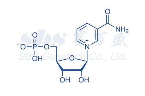 β-Nicotinamide Mononucleotide (≥99%)