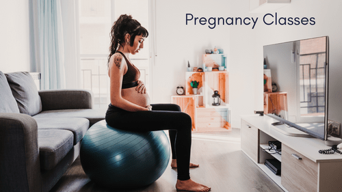 5 week summer 2020 Pregnancy Online Course