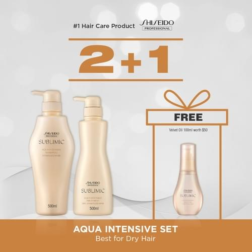 SHISEIDO PROFESSIONAL Aqua Intensive 500ml Shampoo + 500ml Treatment BUNDLE (Best for Dry Hair)