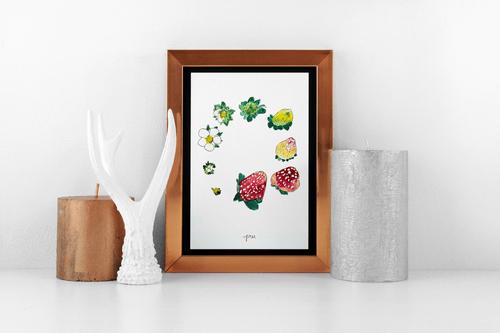 Berry Lifecycle prints