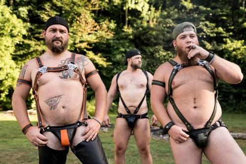 Bull Dog  Harness with Side Straps