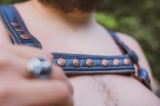 Bull Dog Harness