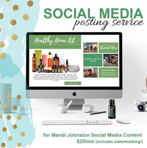 Social Media Posting Service - ONE MONTH