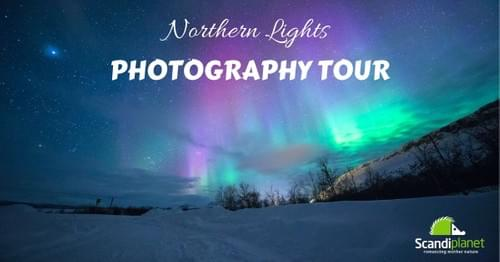 Northern Light Photography Tour