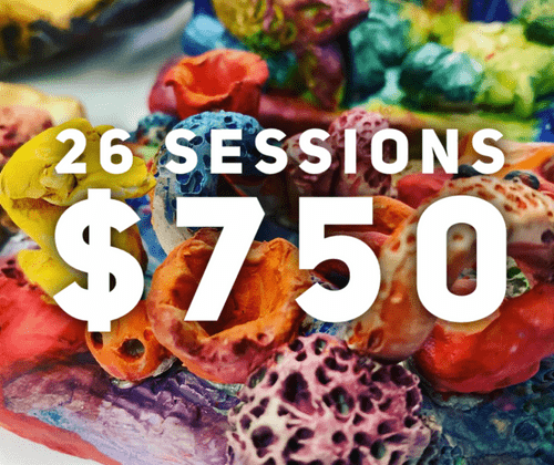 Weekly classes - 26 sessions ($1300 Value of credits)