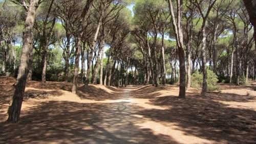 Every Saturday from 5th March | Wild Adventures by e-bike in Monte Argentario