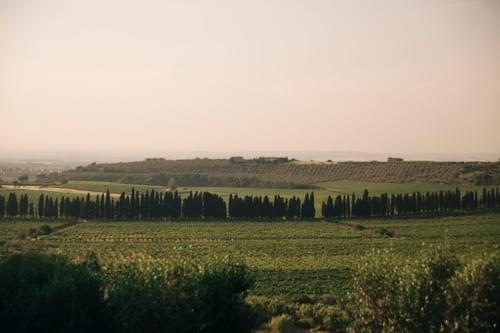 The genuine Food and Wine experience in the countryside of Rome