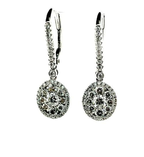 Oval Shaped Cluster Hanging Earrings