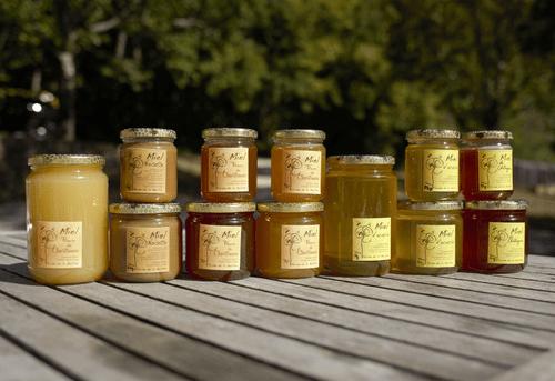 Miel de Montagne  - FERME DE LA BETH