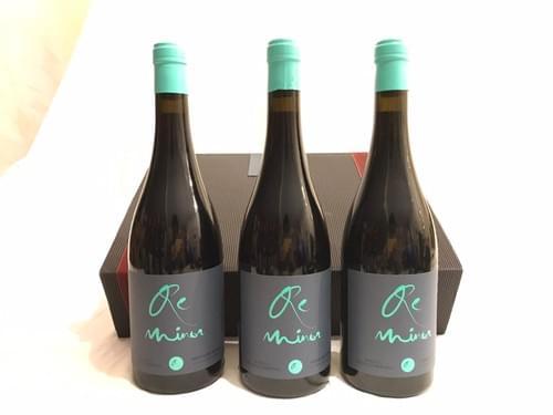 3 Botellas ReMinor 2018