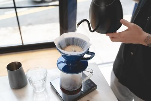 Elementary Filter Brewing Course