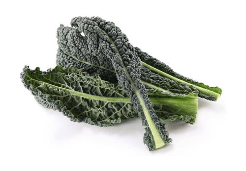 Kale (Lacinato)