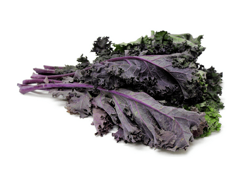 Kale (Red Russian)