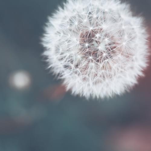 3-er Paket für mind your heart SPEZIAL | Die Impulsworkshops mit dem gewissen Etwas