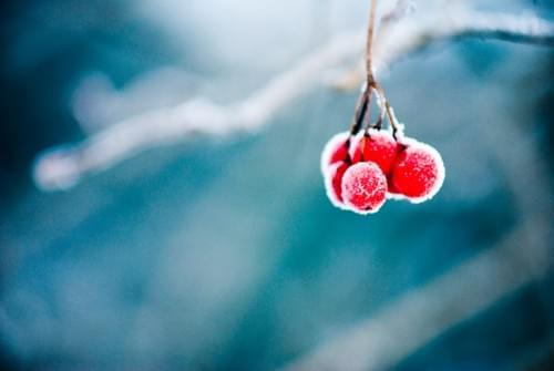 stillLEBEN. Die Reihe im Advent | 1. | 8. | 15. | 22. Dezember von 19 - 20 Uhr