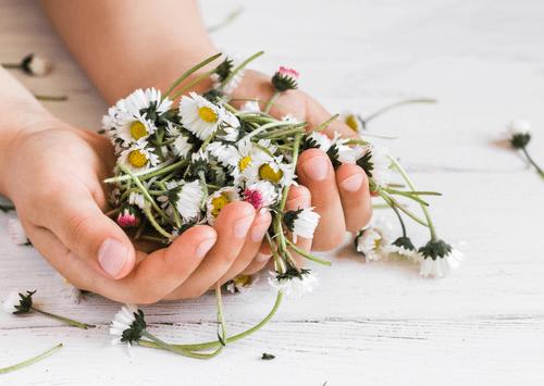 Der Geschmack des Lebens. Ein Muße-Retreat|20. - 21. Mai 2021|ONLINE|DUO-Preis für Paare und Freunde