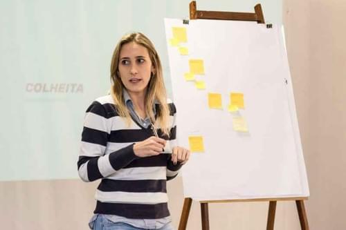 [In Company] Vetor - Introdução à Facilitação Criativa