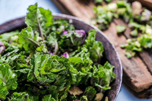 Kale + Brussel  Sprout Salad with Toasted Almonds, Bacon Vinaigrette