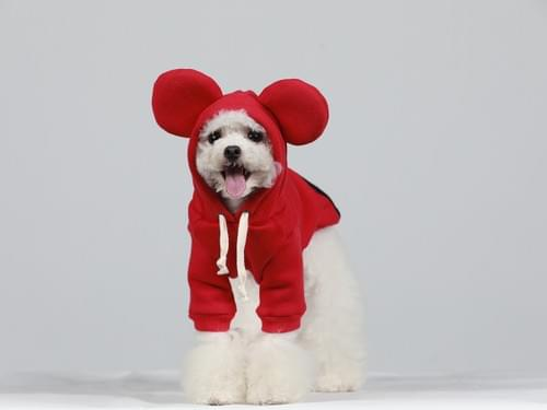 CP20-132 Micky Mouse Hoodie