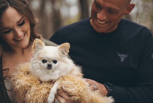 Dog + Human Session