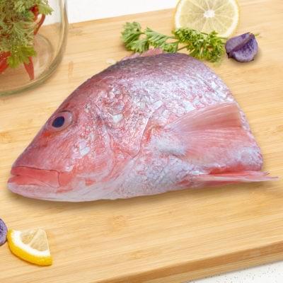 FRESH FROZEN RED SNAPPER HEAD | 鲜冻红曹鱼头 600G