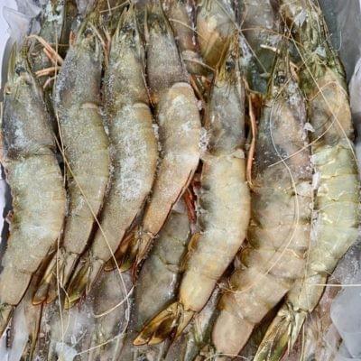 VANNAMEI PRAWN HOSO 41/50 | 南美白虾 700G