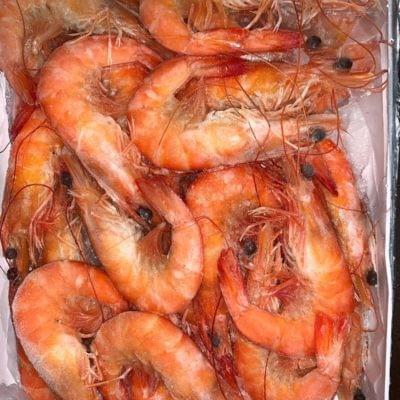 COOKED PRAWN | 熟虾 700G