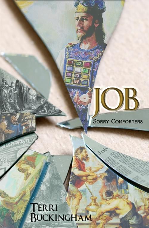 NEW BOOK! Job: Sorry Comforters (PRINT)
