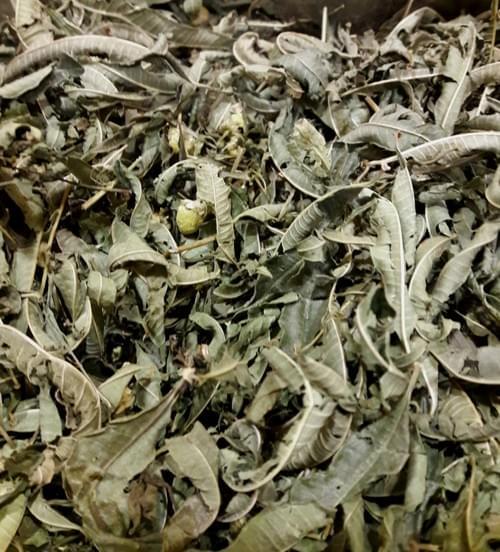 Infusão de plantas bio «peso da barriga» (50gr - 100gr)