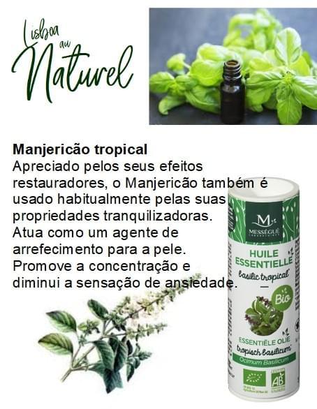 Manjericão tropical bio, 10 ml