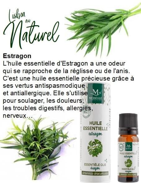 Estragon, 10 ml,