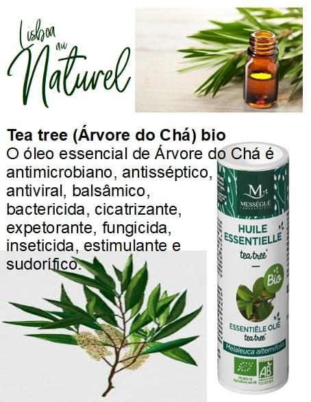Tea tree (Árvore do Chá) bio, 10 ml