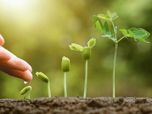 Agro-écologie : principes naturels de la fertilité (26/03 - 27/03)