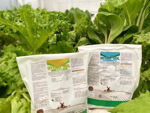 Solución Nutritiva A y B