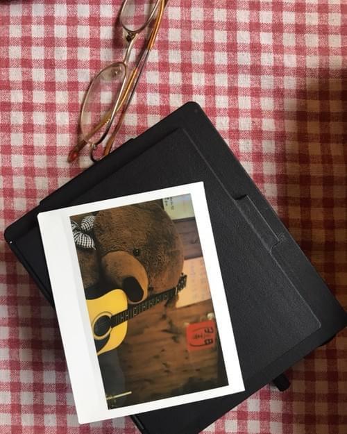 Polaroid 600SE instax back