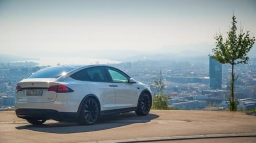 2017 Model X P100D - Tobia - available from December 2nd 2020