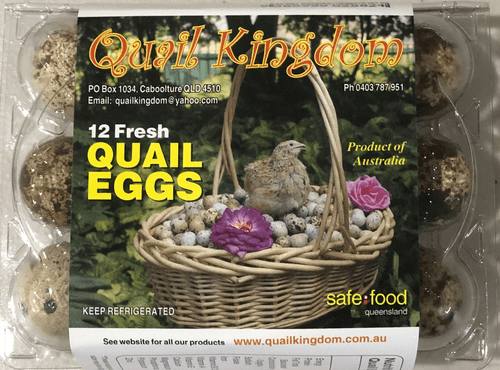 Fresh Quail Eggs - 16 Dozens