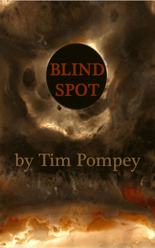 Blind Spot (eBook)