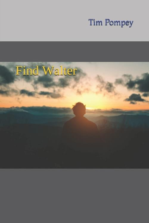 Find Walter (eBook)