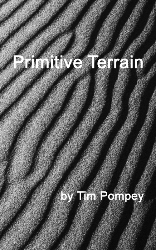 Primitive Terrain (eBook)