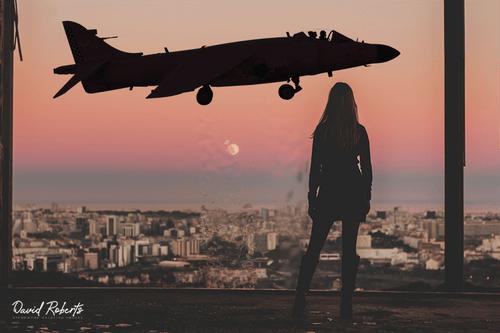 0399 Harrier Girl