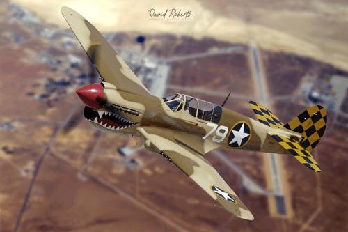 0338 P40 Kittyhawk trainer