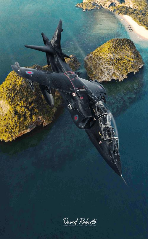 0388 Harrier T2