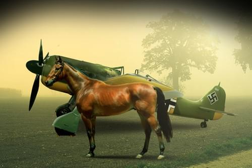 0017  Race horse and Focke Wulf 190