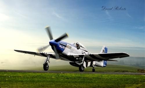 0073 P51D Mustang